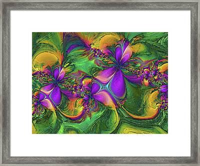Orchids Framed Print by Alexandru Bucovineanu