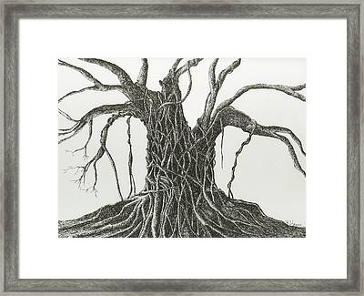 Framed Print featuring the drawing  Patience by Rachel Hames