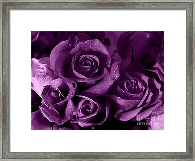 Purple Haze Framed Print by Nancie DeMellia