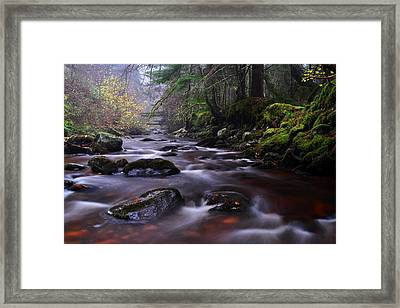 Reelig Glen Framed Print
