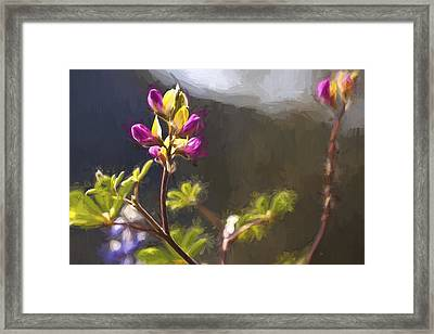 Right Side Up II Framed Print