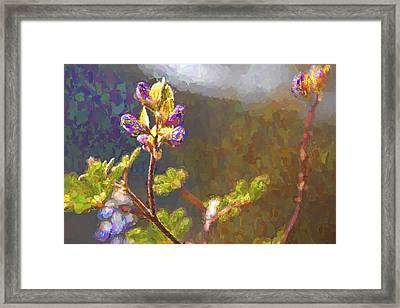 Right Side Up IIi Framed Print
