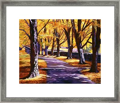 Road Of Golden Beauty Framed Print by David Lloyd Glover