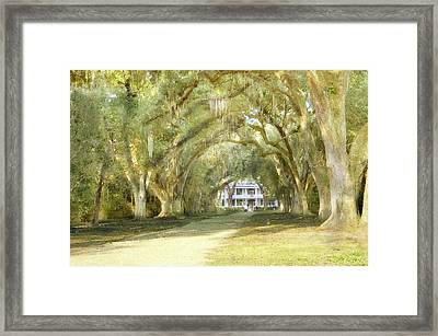 Framed Print featuring the photograph  Rosedown Plantation by John Hix