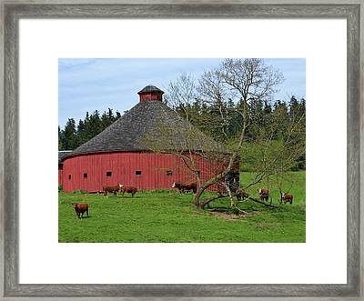 Round Red Barn Framed Print by Ansel Price