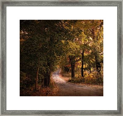 Rural Road  Framed Print by Jessica Jenney
