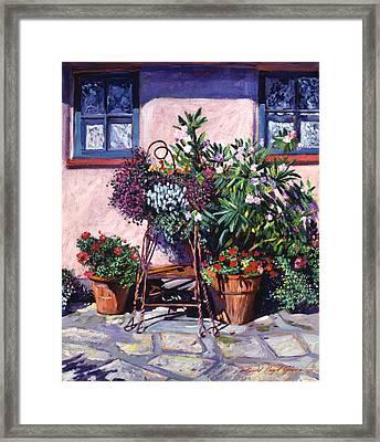 Shadows And Flower Pots Framed Print by David Lloyd Glover