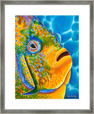 Spotted Angelfish Framed Print by Daniel Jean-Baptiste