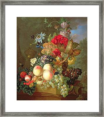 Still Life With Auriculus  Framed Print by Gerrit Van Leeuwen