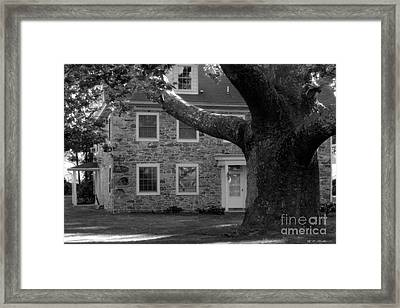 Stone House And A Large Sycamore Tree Framed Print by Heinz G Mielke