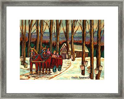 Sugar Shack Framed Print by Carole Spandau