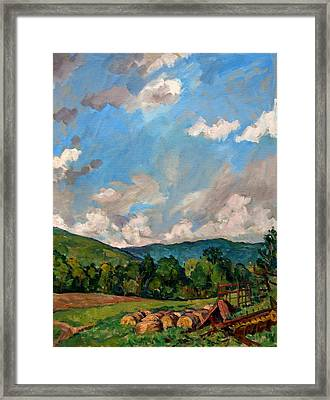 Summer Farm Berkshires Framed Print