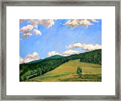 Summer Shapes Berkshires Framed Print