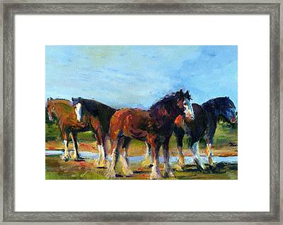 The Four Clydesdales  Framed Print by Kathy Dueker