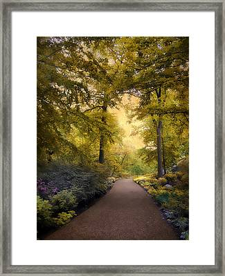 The Golden Walkway Framed Print by Jessica Jenney