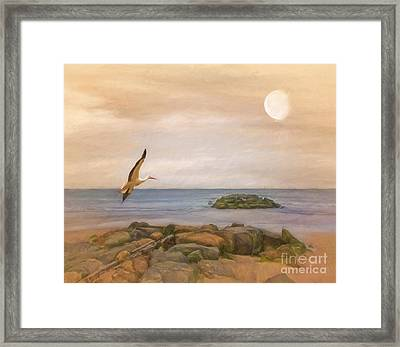 The Stork And The Sea Framed Print