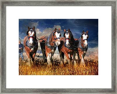 The Team Framed Print by Trudi Simmonds