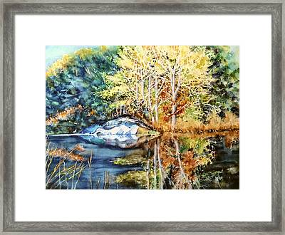The Tree Across The Pond  Framed Print by June Conte  Pryor