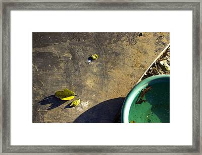 Framed Print featuring the photograph  Three Is Family by Prakash Ghai