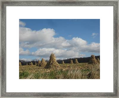 Tied  Up For The Winter Framed Print by Jeffrey Koss
