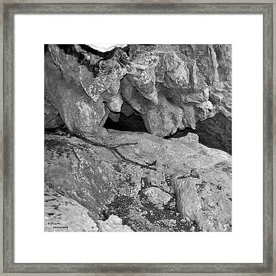 Tips Framed Print
