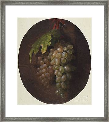 Title Grapes Rome Framed Print by MotionAge Designs
