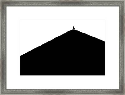 Framed Print featuring the photograph  Unchained  by Prakash Ghai