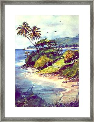 Vieques Island Puerto Rico Framed Print by Estela Robles