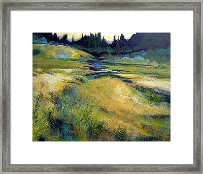 Water Source Framed Print by Dale  Witherow