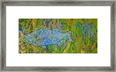 White Perch - White Crappie Framed Print