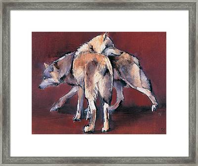 Wolf Composition Framed Print by Mark Adlington