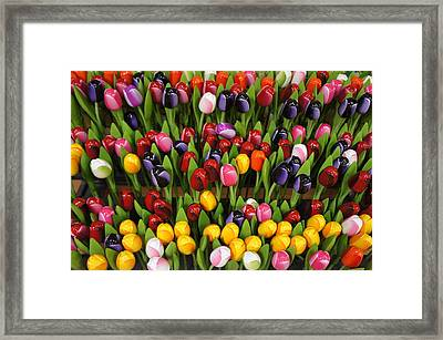 Wooden Colorful Tulips Framed Print