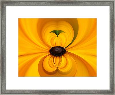 Yellow 3 Framed Print