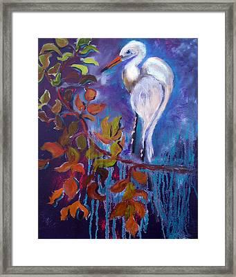 011816 Erget Framed Print