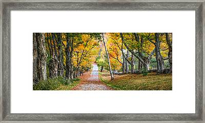 #0119 - New Hampshire Framed Print