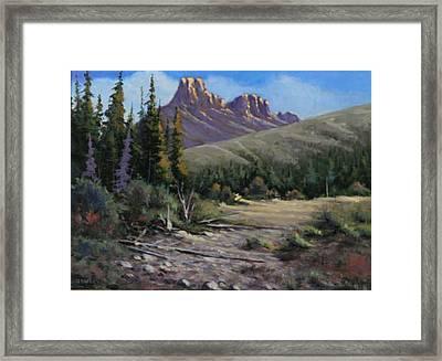 040610-912 Horse Thief Creek Framed Print by Kenneth Shanika