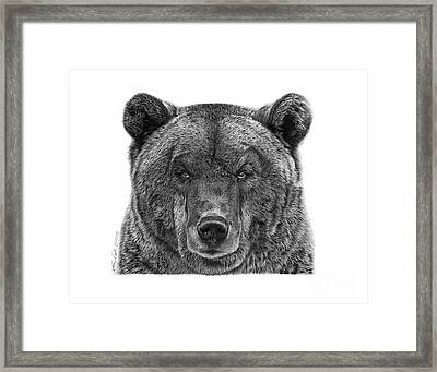 045 Papa Bear Framed Print by Abbey Noelle