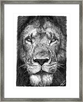 059 - Lorien The Lion Framed Print