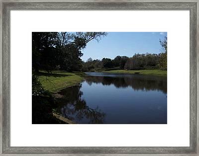 071115 Louisiana Bayou Framed Print