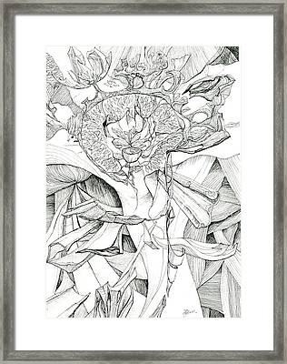 0811-26 Framed Print