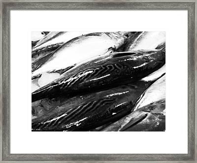 09026 Framed Print by Jeffrey Freund