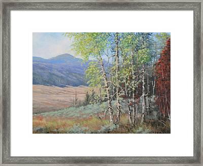 090925-68   The Peak Of Summer Framed Print by Kenneth Shanika