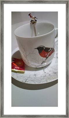 Kotori Means Bird Framed Print