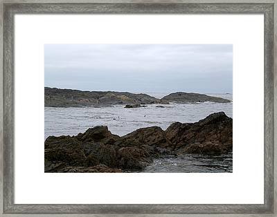 22-05-15 Framed Print by Darrell MacIver