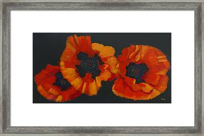 3 Poppies Framed Print