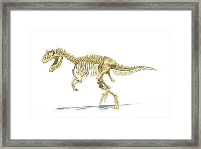 3d Rendering Of An Allosaurus Dinosaur Framed Print by Leonello Calvetti