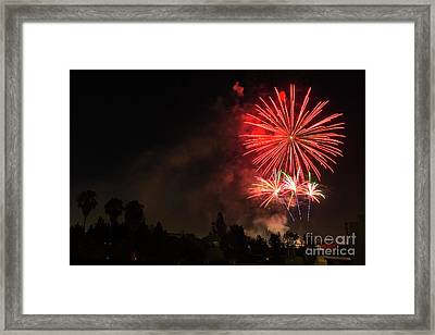 4th Of July Fireworks  Framed Print by Eyal Aharon