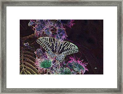 5807 4 Framed Print by Jim Simms