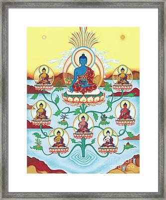 8 Medicine Buddhas Framed Print by Carmen Mensink