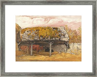 A Cow Lodge With A Mossy Roof Framed Print